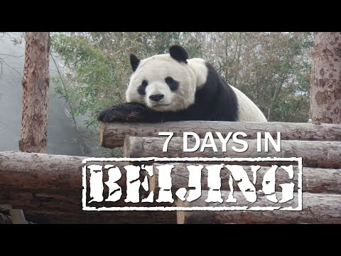 7 Days in Beijing
