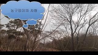 32세 뱀띠 己巳年생의 특징과 운세