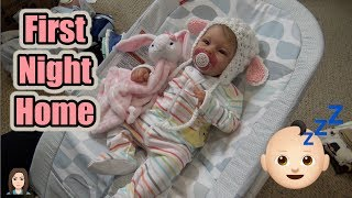 Reborn Baby Bridgette's First Night Home | Kelli Maple