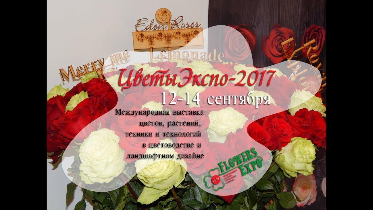 Выставка цветы крокус 2017