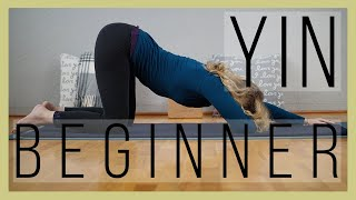 60 min Beginner Yin Yoga | Why We Stress our Joints in Yin Yoga | Yoga with Dr. Melissa West 410