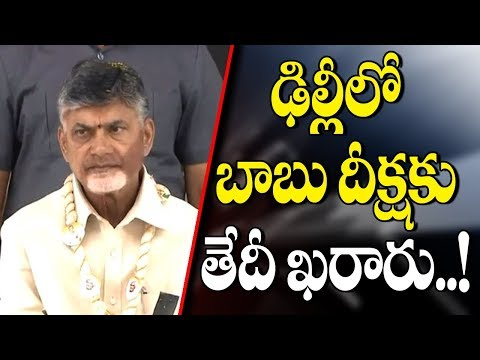 AP CM Chandrababu 1 Day Hunger Strike At Parliament For Special Status