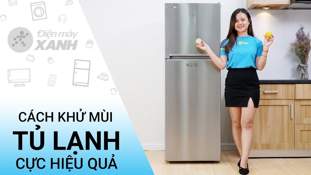 Cách khử mùi hôi cho tủ lạnh cực hiệu quả • Điện máy XANH