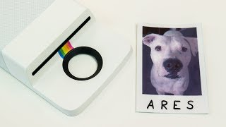Imprimir fotos Polaroid con tu celular (Insta-Share Printer)