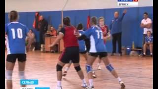 В высшей лиге чемпионата России по гандболу в эти дни проходит второй тур
