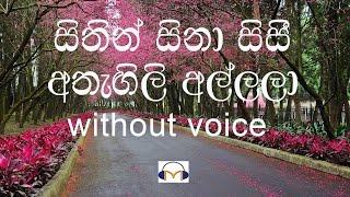 Sithin Sina Sisi Karaoke (without voice) සිතින් සිනා සිසි