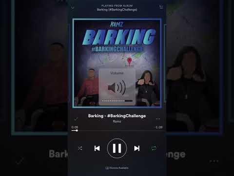 Ramz - barking instrumental challenge