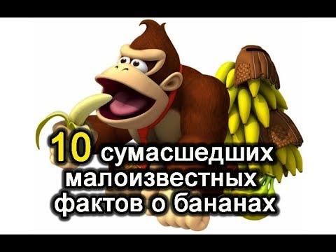10 сумасшедших малоизвестных фактов о бананах