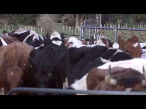 Bio Farm