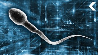 Scientists Want to Insert Bionic Sperm Into Women's Vaginas