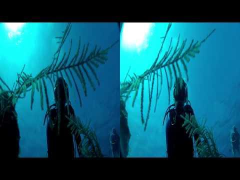 Grand Cayman 2015 - 3D