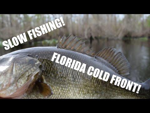 Fishing The Ocklawaha River In Florida