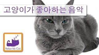 휴식 고양이를위한 음악 - 당신의 고양이가 잠을 도와주세요!