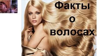 Уход за волосами. Все о красоте и здоровье волос