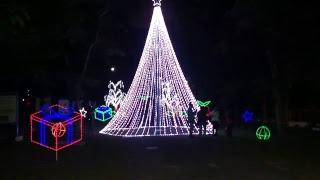 AO VIVO Natal Iluminado do Butantan