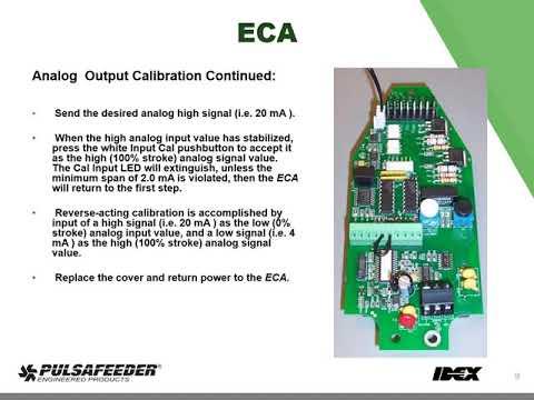 ECA Training