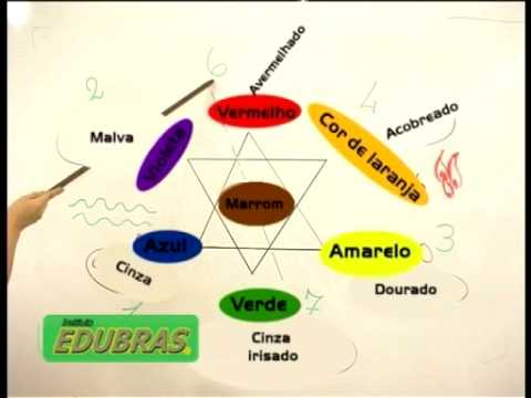 Curso de Cabeleireiro Colorimetria -  (Curso Online ou DVD EDUBRAS)