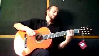 ALHAMBRA 4F - Flamenco Gitarre
