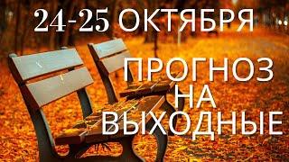 Прогноз на 24-25 октября: Прорывы в делах, учебе, озарения. Астрологический прогноз и карты Ангелов