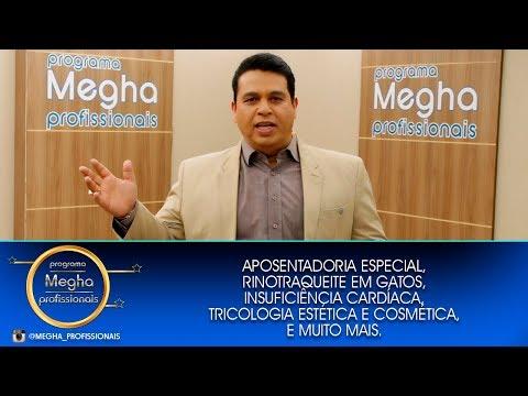Programa Megha Profissionais n°672