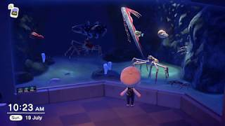 A Walk Around a Complete Sea Creatures Aquarium in Animal Crossing: New Horizons Museum