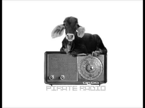 Sometimes-Pirate Radio
