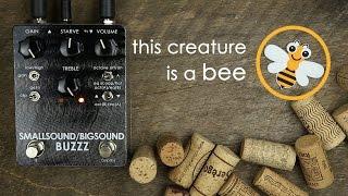 Smallsound/Bigsound - Buzzz