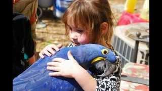 фотографии животных для детей О чем они думают