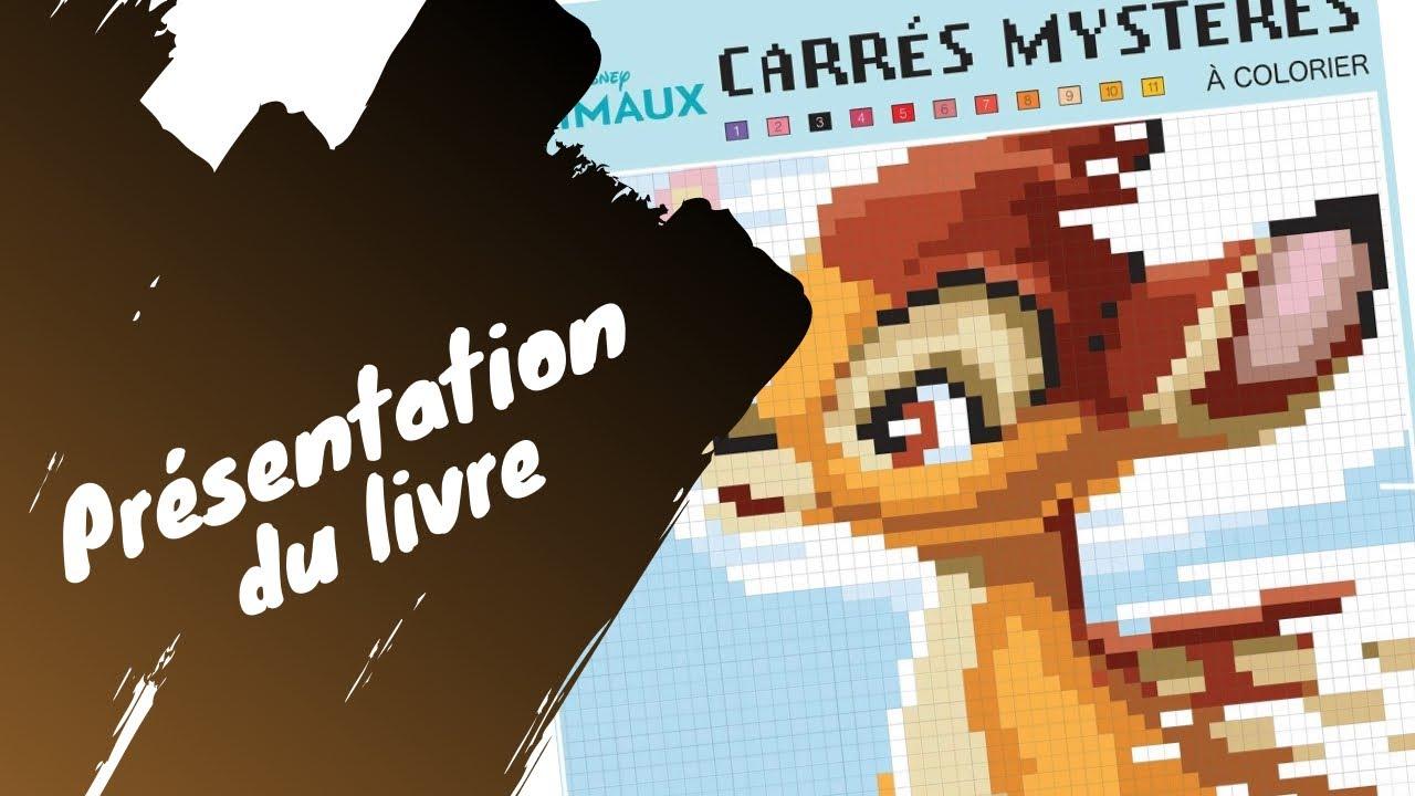 Animaux Disney - Pixel art - Carrés Mystères Hachette