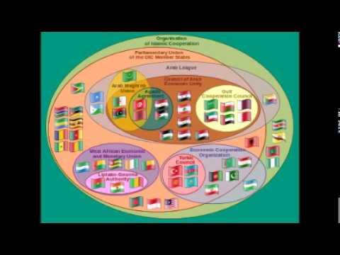 The Economic Cooperation Organisation