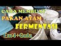 - Cara Membuat Pakan Ayam Fermentasi Dengan EM4 mudah