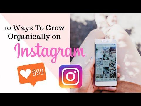 10 Ways To Grow Organically On Instagram  | Etsy Tutorials