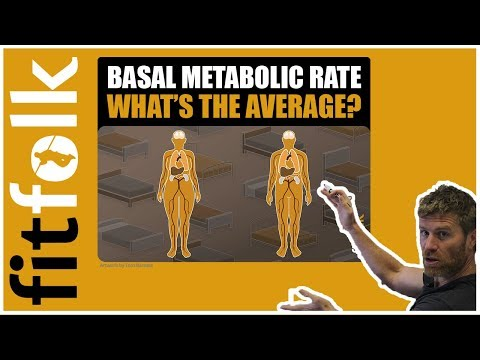 Basal Metabolic Rate (What's The Average BMR?)