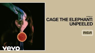 Watch Cage The Elephant Rubber Ball video