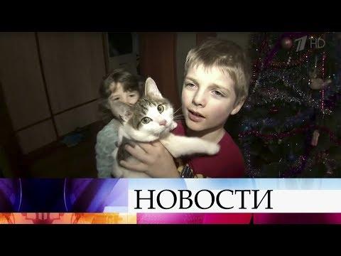 В Вологодской области многодетные семьи могут получить земельный участок или деньги.