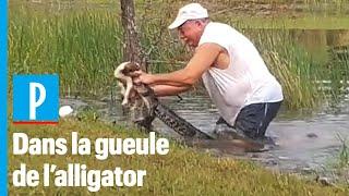 Un retraité sauve son chiot des mâchoires d'un alligator en Floride
