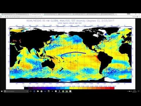 ENSO Update (March 2017)