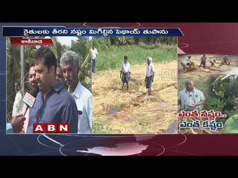 Pethai cyclone |  Rains Destroy Crops In East Godavari District | ABN Telugu