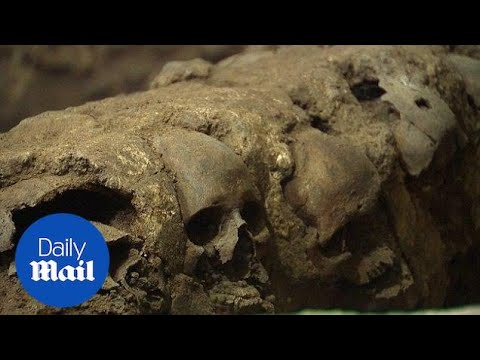 Tower of skulls uncovered by archeologists from Templo Mayor in Mexico - Daily Mail