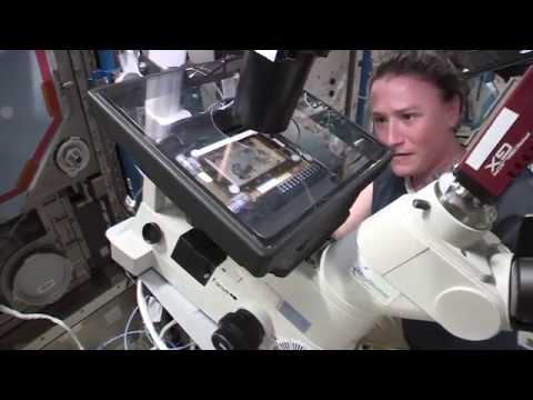 Cancer Therapy Experiment on Space Station Explained by Astronaut