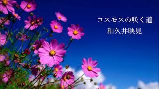 和久井映見 - コスモスの咲く道