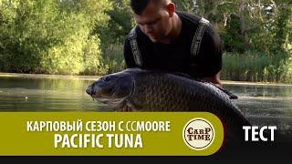 Карповый сезон с CCMOORE Pacific Tuna ТЕСТ