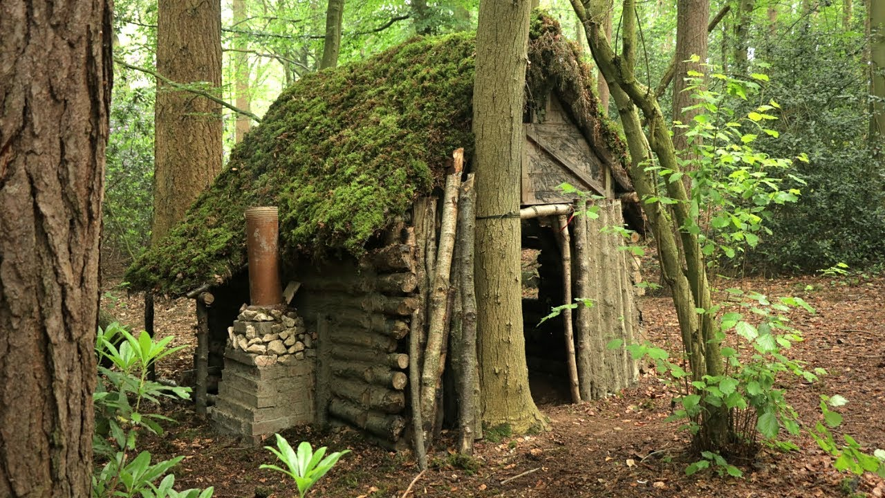 Primitive Log Cabin In The Woods Moss Roof Overnight