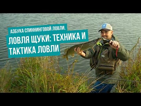 Уроки видео по ловле щуки