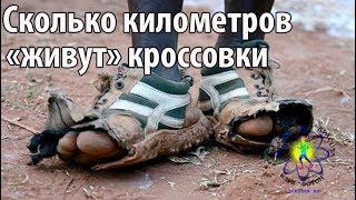 срок службы беговых кроссовок
