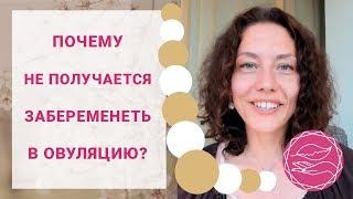 почему не получается забеременеть в овуляцию? | Павел Науменко