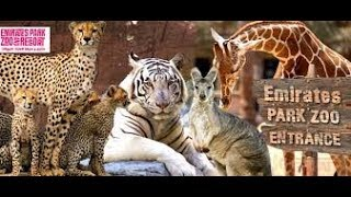 Things to do in Abu Dhabi |Emirates Park Zoo