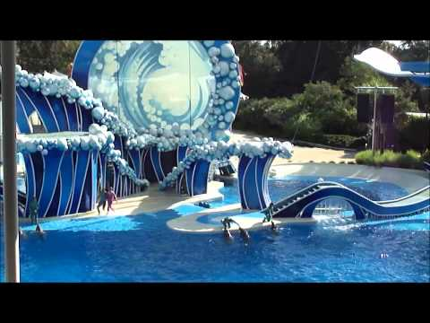 Sea World parks   Orlando, FL