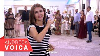 Descarca Andreea Voica - Ascultare - Sarba 2 (Nunta Stana & Alin)