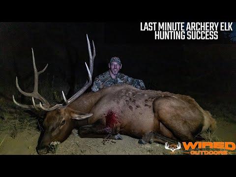 Last Minute Archery Elk Hunting Success